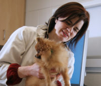Dr. Belle Nibblett and canine patient