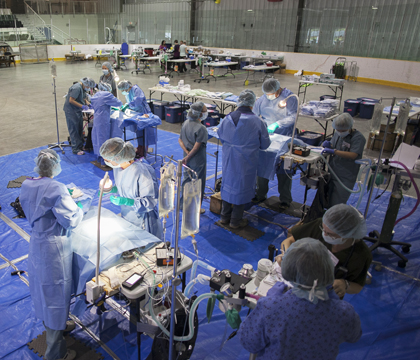 La Ronge's community centre was transformed into a temporary surgery area during the spay-neuter clinic in early September. Photos: Christina Weese.
