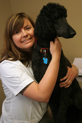 "Dr. Jane Vermeulen: ""I am getting back to the core of why I became a veterinarian."""